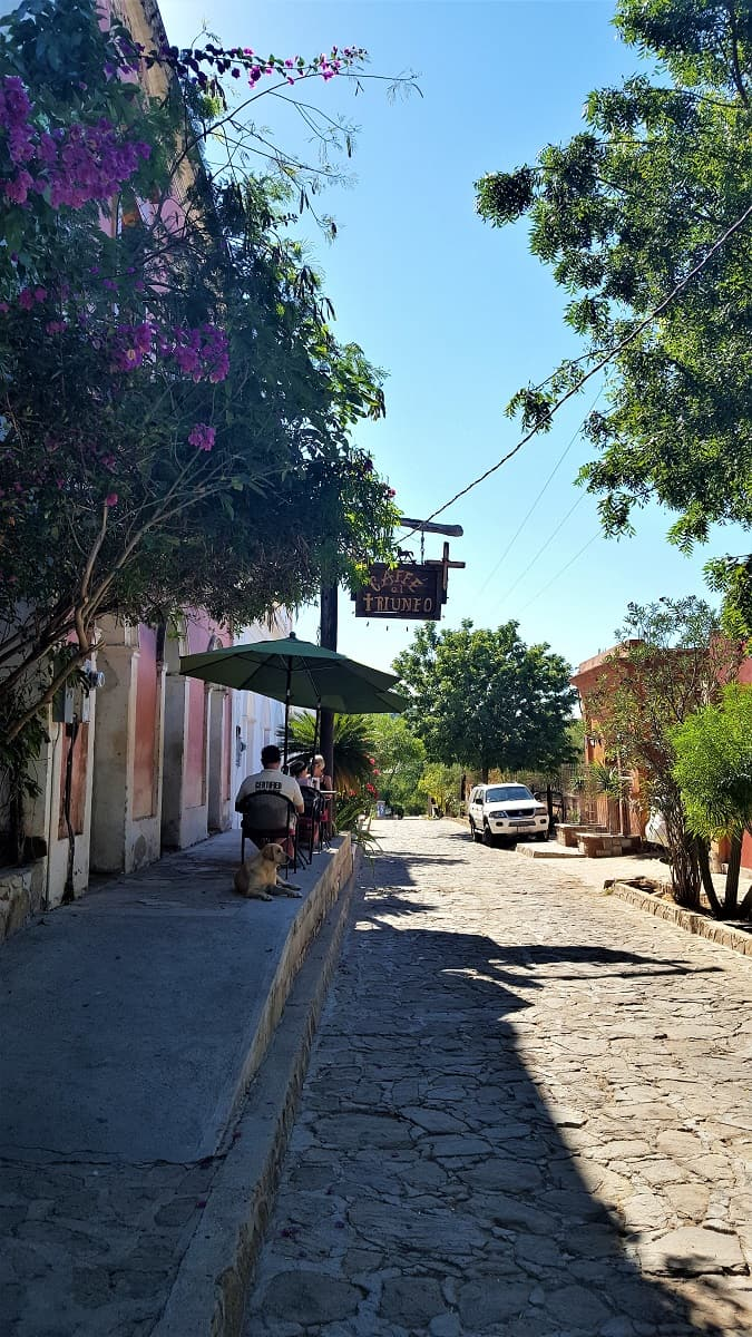 Cafe El Triunfo