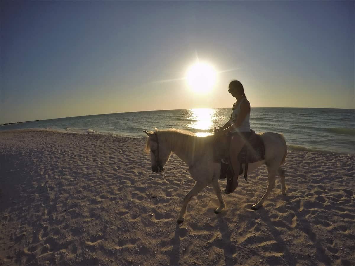 Sunset on Horseback