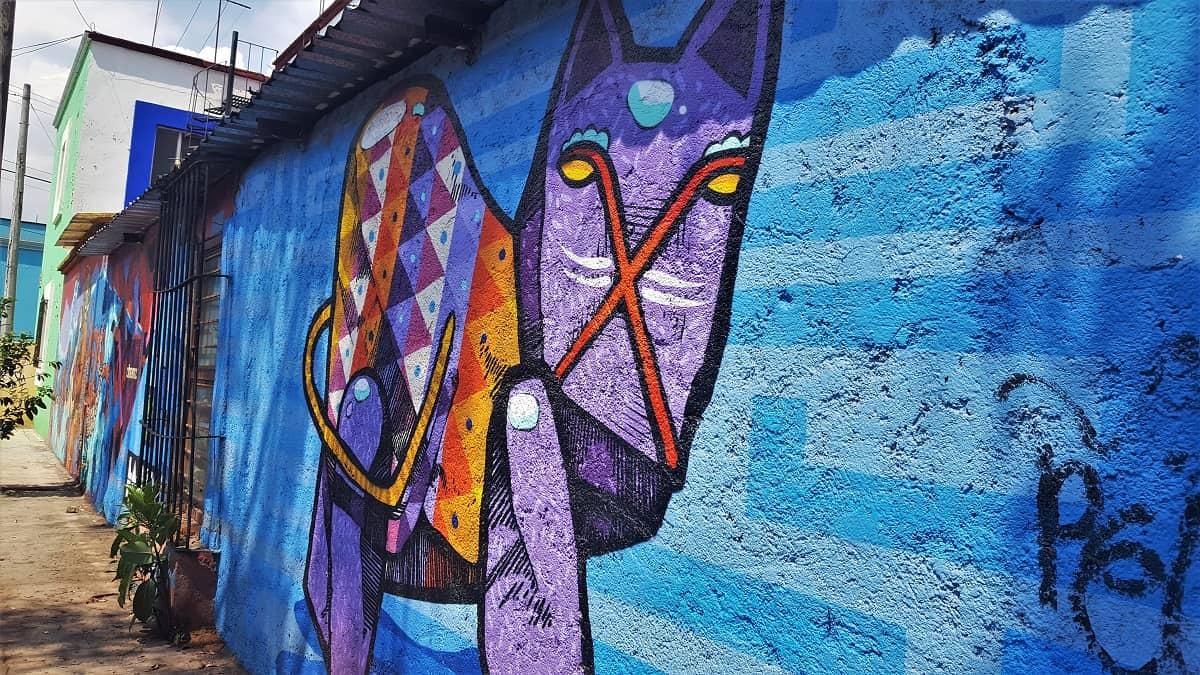 Oaxaca Street Art