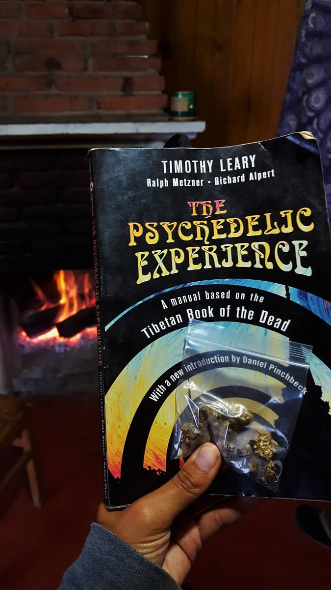 Our Psychedelic Experience