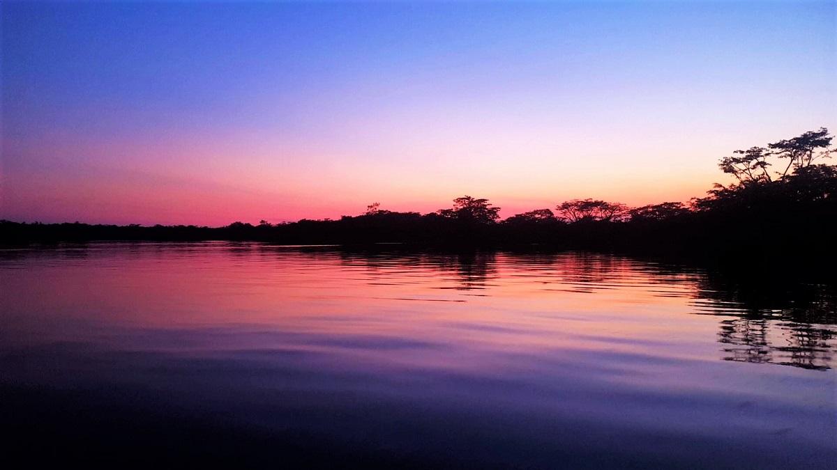 Amazon Jungle Sunset