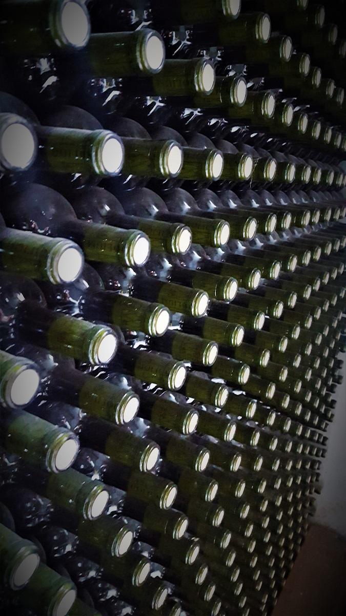 Dolium Winery