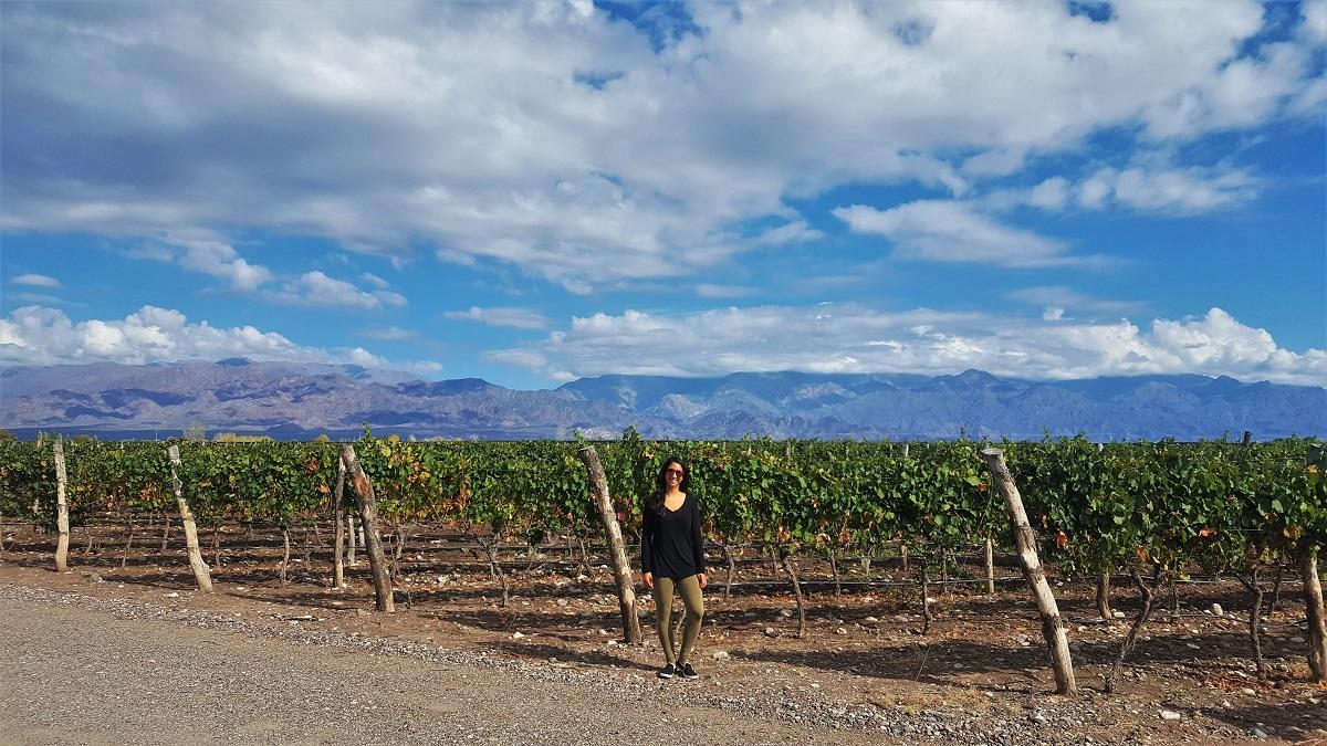 O. Fournier Winery