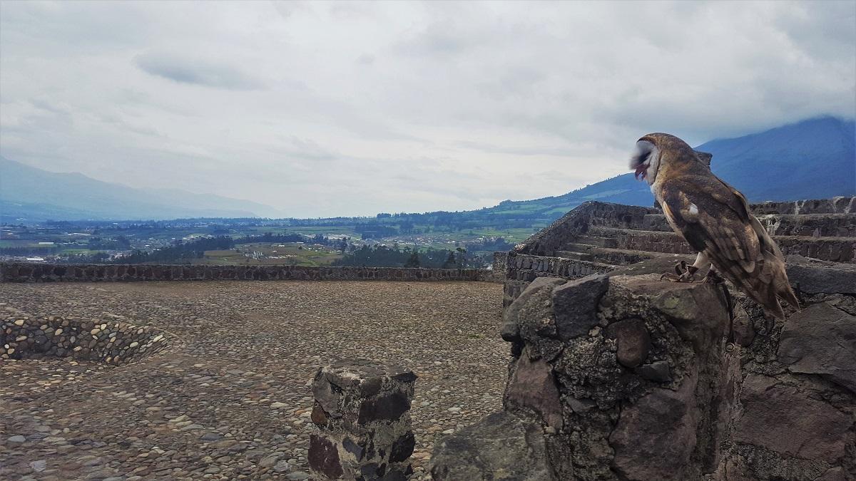 Otavalo Condor Park